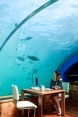 Eating at the worlds first underwater restaurant