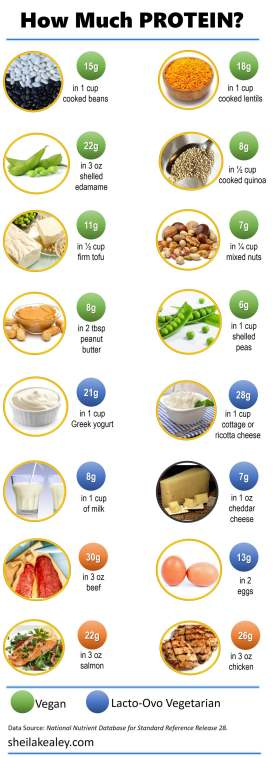 how-much-protein-sm1